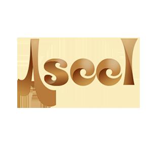 Logo Aseel G