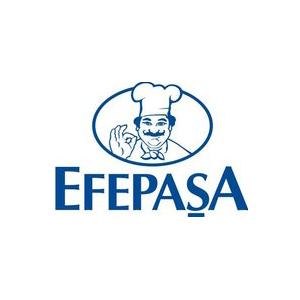 Logo Efepasa G